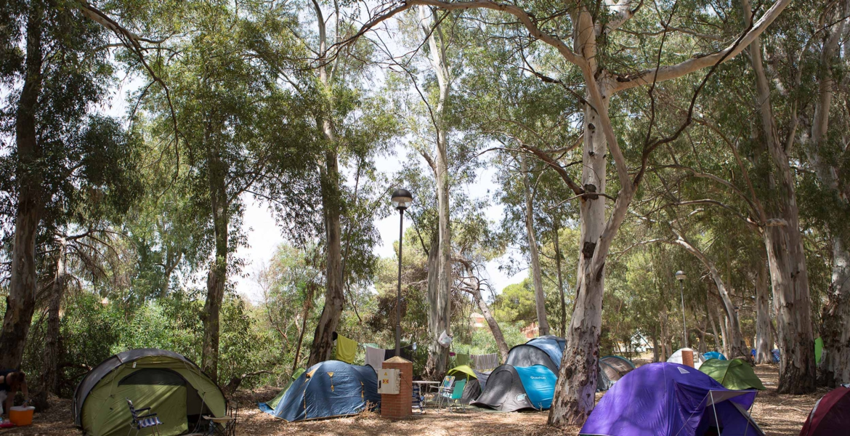 camping-nosinmusica_1